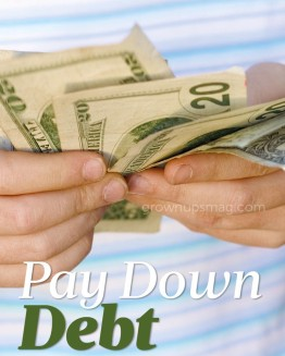 Pay Down Debt
