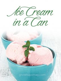 Ice Cream in a Can