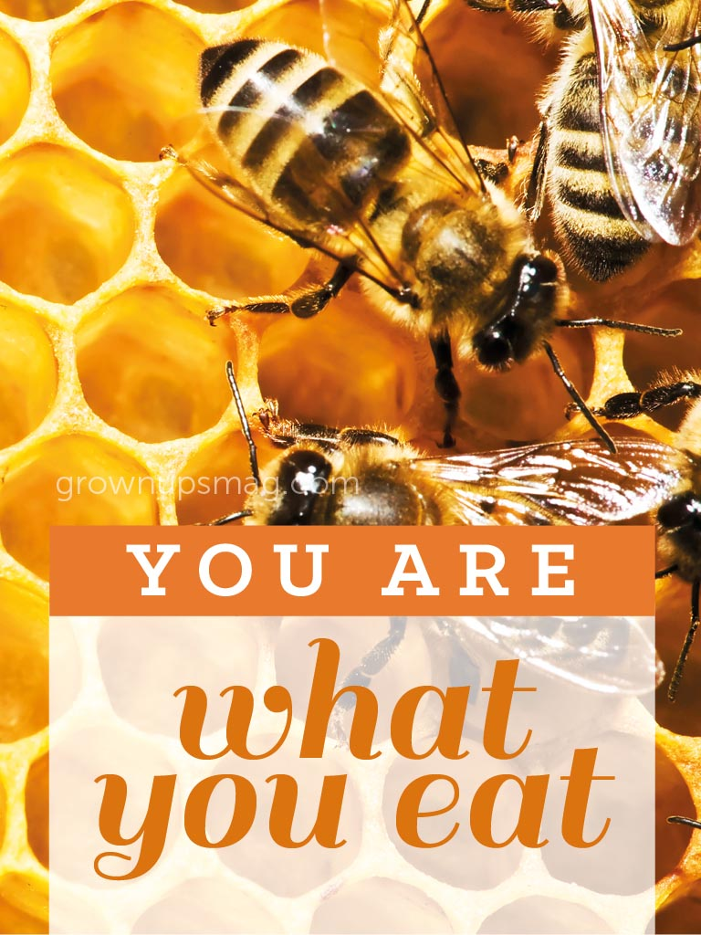 You Are What You Eat! - Grown Ups Magazine