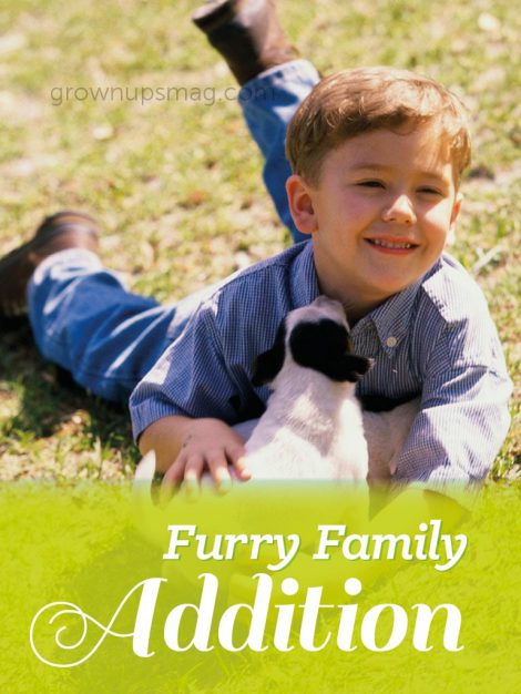 Furry Family Addition